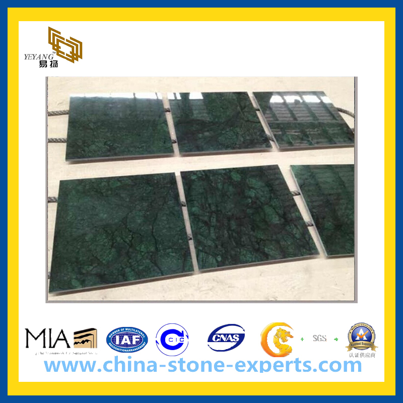 Polished Dark Green Marble Tiles for Floor and Wall(YQC)