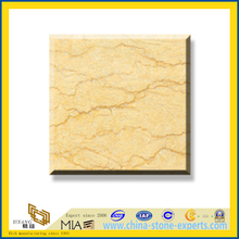 Polished Natural Stone Silvia Marble Slabs for Wall/Flooring (YQC)