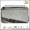 Luxurious Andromeda White granite kitchen countertops & bathroom vanity tops