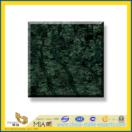 Polished Natural Stone India Green Marble Slabs for Wall/Flooring (YQC)
