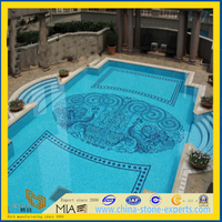 Stone/Glass/Shell Mosaic for Swimming Pool, Wall, Tiles(YQT)