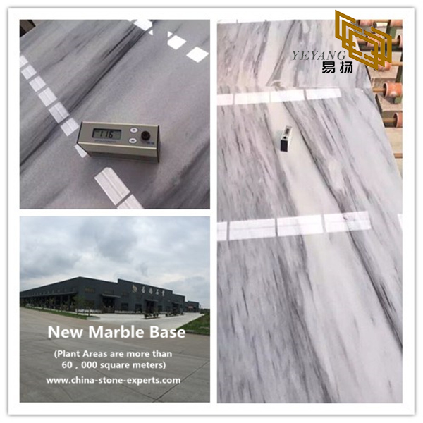 Victoria Falls Marble for Home Design (YQW-MS081605)