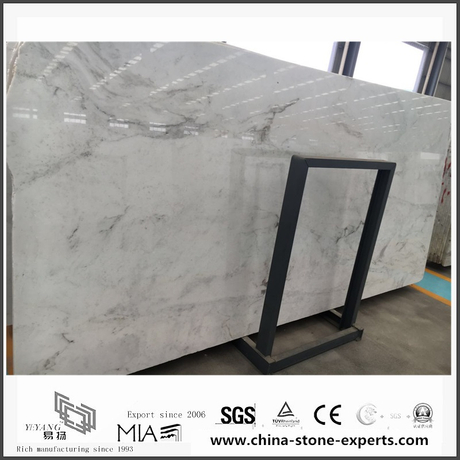 Good New Polished Arabescato Venato White Marble for Floor Tiles (YQW-MSA0621012)