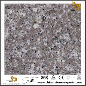 G038 Granite For Countertop Quality Grey Granite