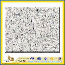 Polished White G601 Granite Slabs for Countertops (YQZ-G1014)