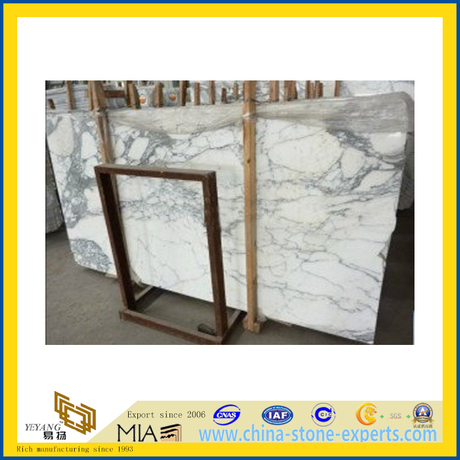 Arabecato Marble Slab for Flooring Decoration