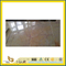 Natural Polished Beige Cream Marble Tile for Wall/Flooring (YQC)