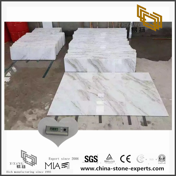 Beautiful Arabescato Venato White Marble Tiles for Floor design (YQW-MSA070605)