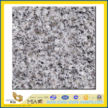 Polished White G603 Granite Slabs (YQZ-G1016)