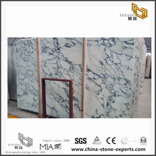 Arabescato White marble for freight & wall in the living room(YQN-090903)