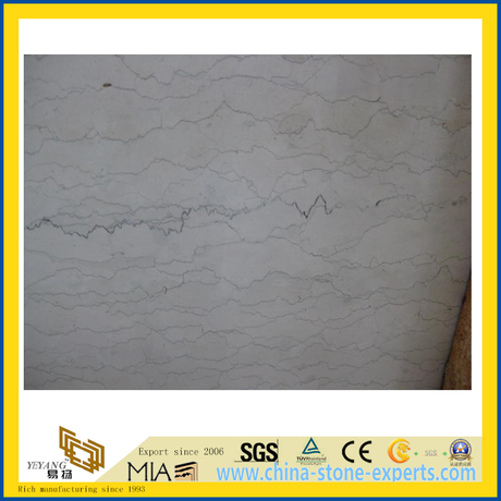 Polished Bianco Perlino Marble Slabs for Countertop or Vanitytop