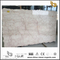 Shell Beige Marble for floor tile (YQN-100601)