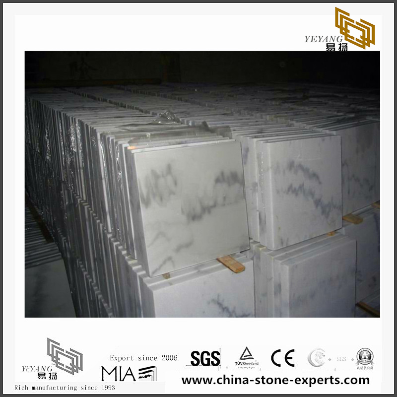 Discount Arabescato White Marbles for sale(YQN-092602)