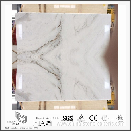 White Marble | Arabescato Venato White Marble for Bathroom Floor Tiles (YQW-MSA2106)